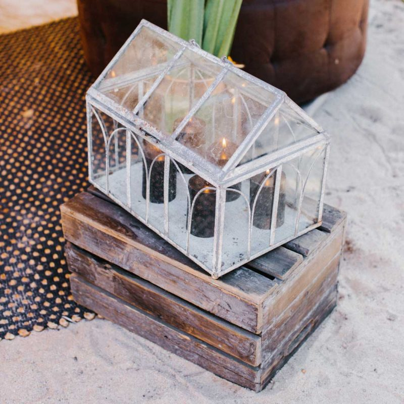 Antique Terrarium